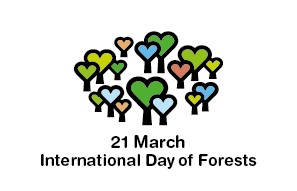 Read more about the article INTERNATIONAL FOREST DAY